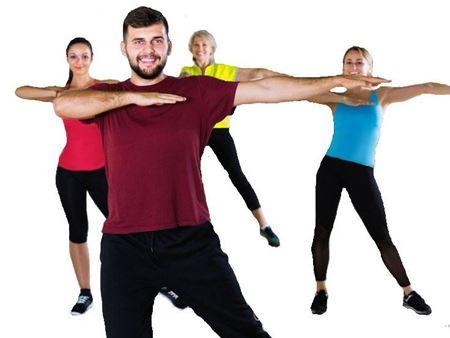 """Imagen para la categoría Clases de fitness """"Danza para la Vida"""""""